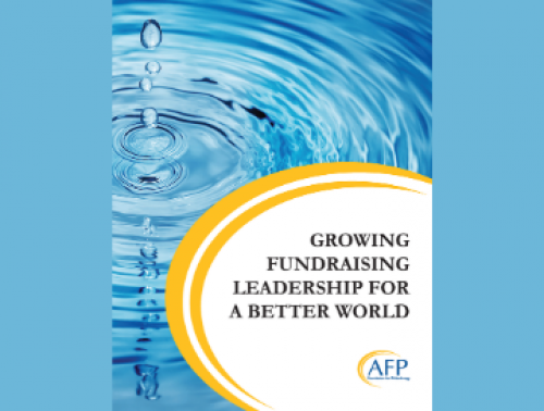 "Cover of Case study that says ""Growing Fundraising Leadership for a Better World"""