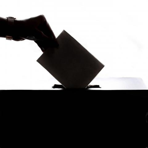 image of hand putting ballot in a box